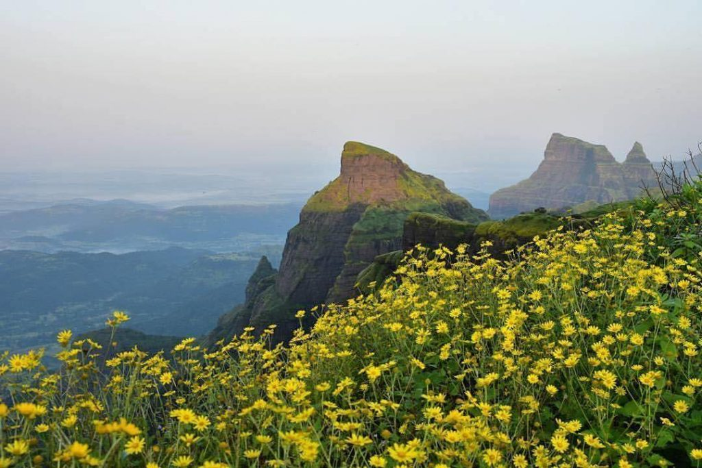 Image result for kalsubai camp